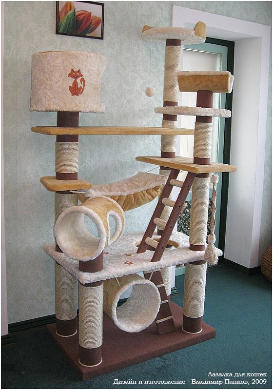 игры для кошек, игрушки для кошек, как поиграть с кошкой