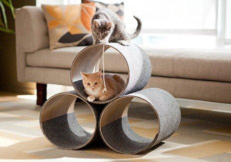 игрушки для кошек своими руками, игры с кошками