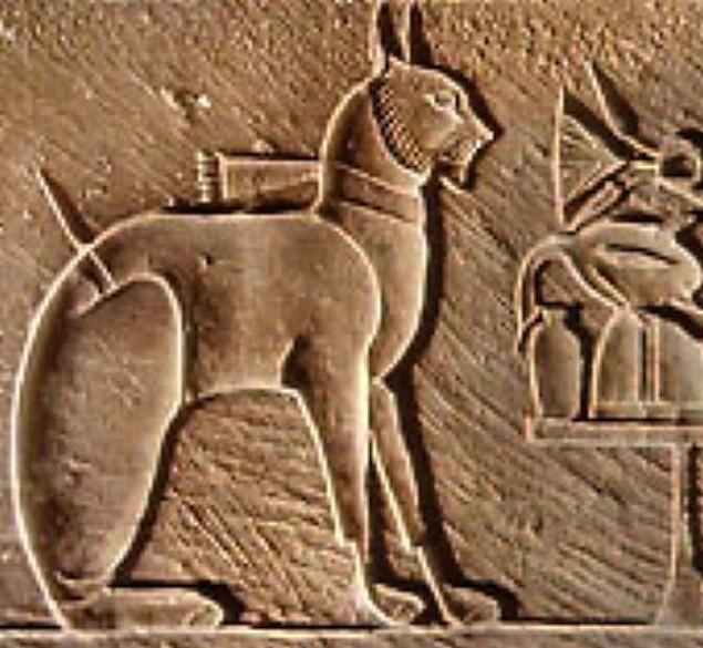 история кошек, домашние кошки, древнеегипетские кошки