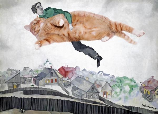 смешные кошки фото, просто добавь кота, коты фото, картины с кошками