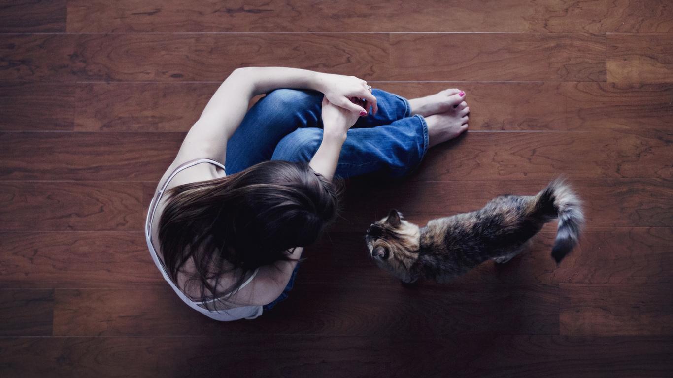 Раскроем все секреты воспитания вашего питомца